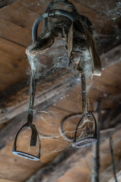 Old harness covered in spider web