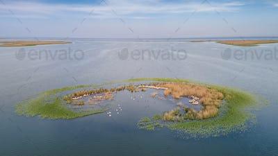 Ceaplace island. Danube Delta, Romania