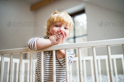 Cute toddler boy standing in a cot at home.