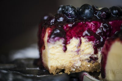 Fresh berry cheescake food photography recipe idea