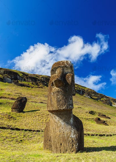 Moais on Easter Island, Chile