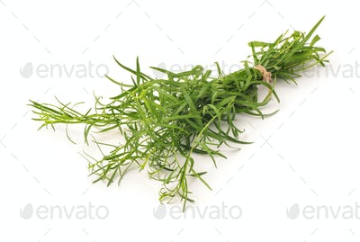 Bunch of fresh tarragon herbs