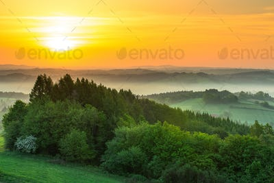 Green fields at sunrise in mist