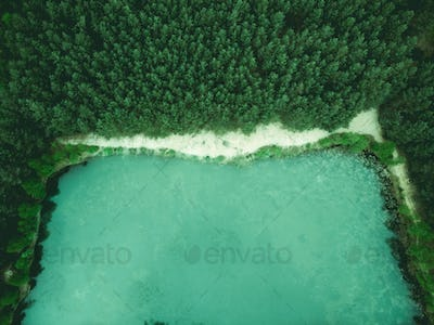Wild pond in forest, birds eye aerial drone view
