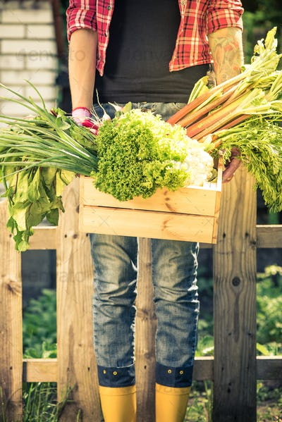 Real people concept, gardener with vegetables