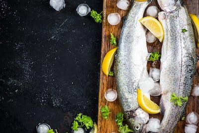 Fresh trout fish, food border background