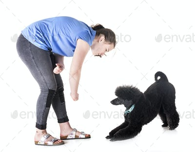 dog, owner and obedience