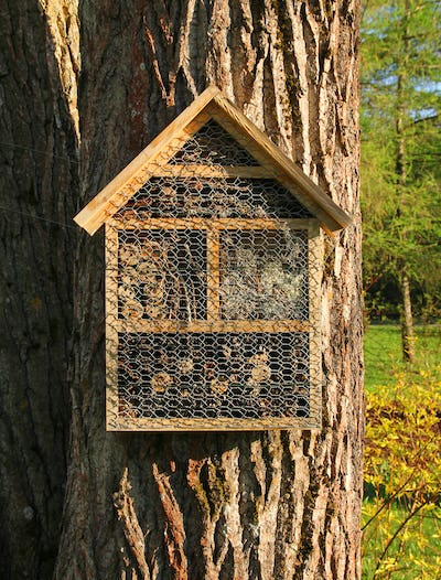 Insect hotel front view