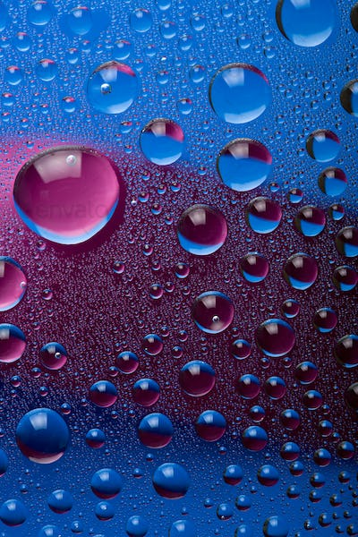 blue and pink water droplets background