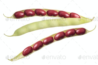 Red kidney bean pods, top view