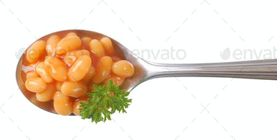 spoon of of beans in tomato sauce
