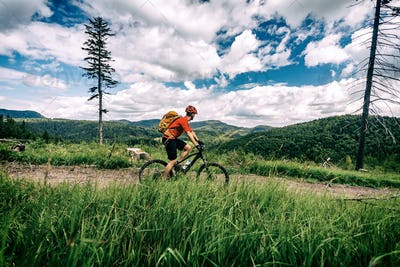 Mountain biker cycling riding bikepacking in woods and mountains