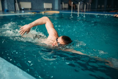 Male swimmer swims on workout in swimming pool