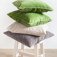 gray and green cushions, houseplant. cozy home
