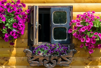 Windows with flower boxes