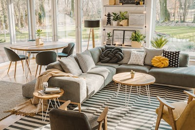 High angle view of a stylish, nordic living room interior with a