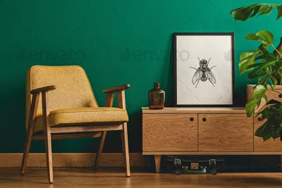 Insect poster and yellow armchair