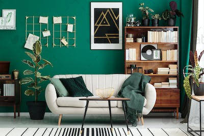 Designer interior with home library