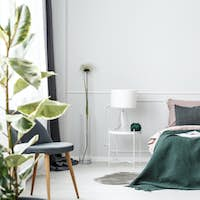 Green blanket on bed