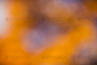 golden orange autumn background blur bokeh, defocusing lens