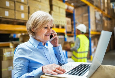Senior woman manager with smartphone and man worker working in a warehouse.