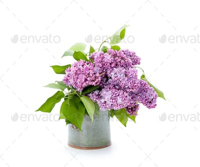 A bouquet of pink lilac in a ceramic vase on a clean white backg