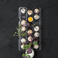 Palette with fresh quail eggs and watercress on a black backgrou