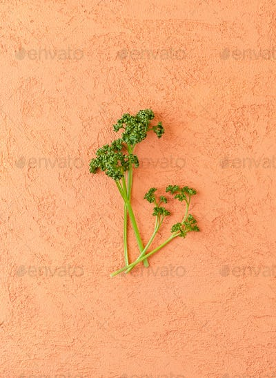 A few branches of curly parsley on a textured orange table.