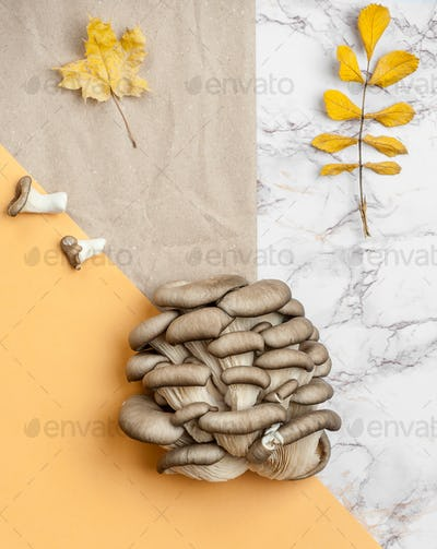 Fresh oyster mushrooms on a background of kraft paper and a marb