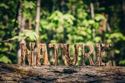 NATURE writing made from wooden letters in the forest