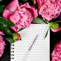 Beautiful pink peony flowers with note.