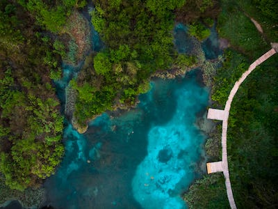 Zelenci Natural Reserve from aerial top down drone view,Slovenia