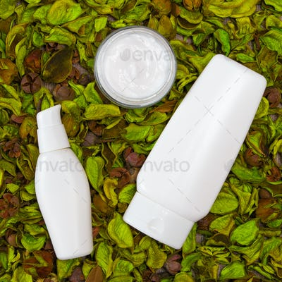 Cosmetic skin care products in green leaves