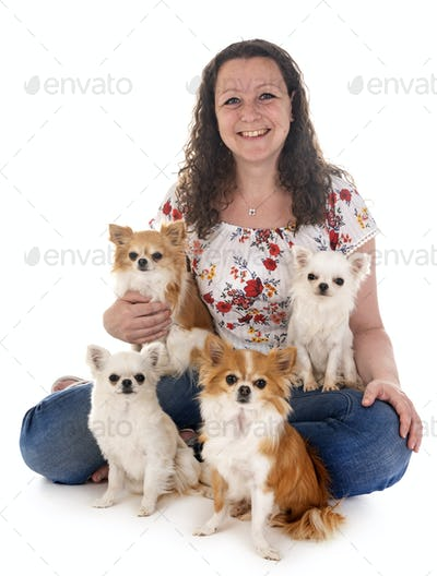 woman and chihuahuas