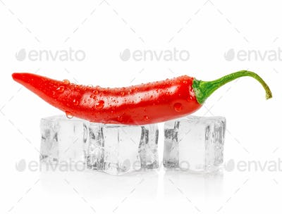 A red chili pepper lying on ice cubes