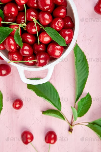 Red cherry in white bowl