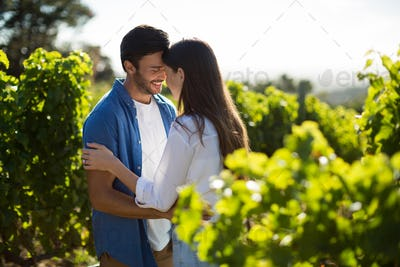 Happy young couple standing face to face at vineyard