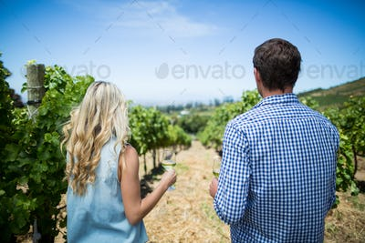 Rear view of couple holding wineglasses