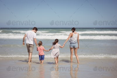 Rear view of family holding hands on shore