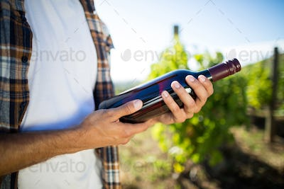 Mid section of man holding wine bottle at vineyard