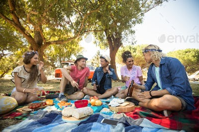 Friends talking while having food during picnic