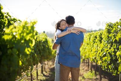 Couple hugging amidst plants at vineyard