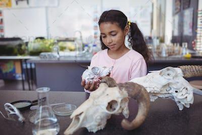 Schoolgirl holding animal skull
