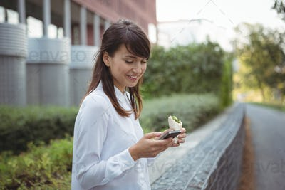 Executive having veg roll while using mobile phone on road
