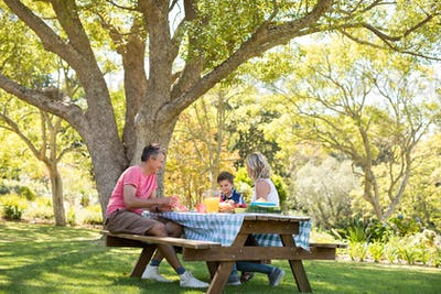 Happy family interacting with each other while having meal in park
