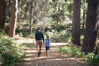 Father and son walking in forest on sunny day