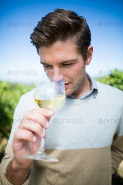 Young man smelling wine in glass at vineyard