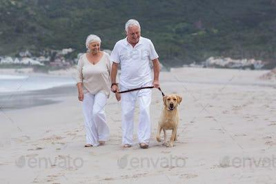 Senior couple walking on the beach with dog