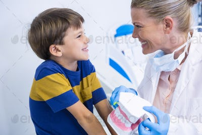 Happy dentist holding dental mold while looking at boy