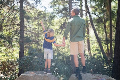 Boy pointing way while standing with father in forest